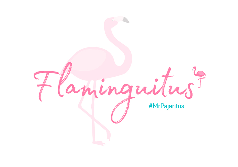FLAMINGUITUS